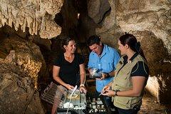 Imagen Capricorn Caves Fossil Tour