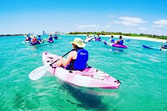 Half Day Island Kayaking and Snorkeling Tour