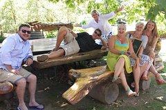 Cape Peninsula Penguins and Wine Tour
