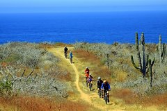 City tours,City tours,Excursions,Bike tours,Full-day excursions,Adventure: bike, jet ski, hiking...