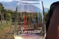Transfer from Sorrento to Naples with wine tasting (1-8 PAX)