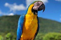 Admission Ticket - Bird Zoo - Poços de Caldas