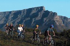 Ver la ciudad,Ver la ciudad,Salir de la ciudad,Actividades,Actividades,Visitas en bici,Excursiones de un día,Actividades de aventura,Actividades de aventura,Adrenalina,Adrenalina,