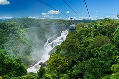 Imagen Skyrail Rainforest Cableway Day Trip from Port Douglas