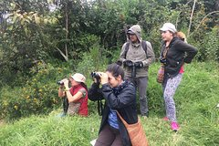 Imagen Bird Watching Private Day Trip to Chicaque