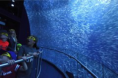 Imagen National Geographic Encounter: Ocean Odyssey Admission