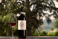Organic Winery Tour and Tasting in Tuscany Chianti hills