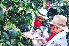 EXPERIENCES COLOMBIA (coffee tour)