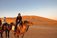 Excursions,Activities,Multi-day excursions,Adventure activities,Adrenalin rush,Excursión to the desert