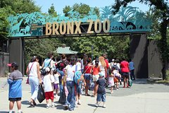 Little Italy & China Walking Tour & Visit The Bronx Zoo