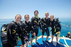 Imagen Learn to Scuba Dive on the Great Barrier Reef: 4-Day PADI Open Water Dive Course