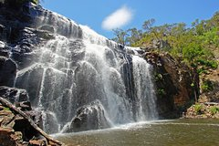 Imagen Grampians National Park Small-Group Eco Tour from Melbourne