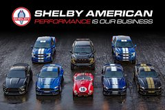 Shelby Prime Experience