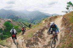 City tours,Activities,Bike tours,Adventure activities,Adrenalin rush,