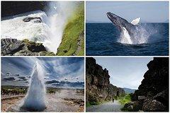 Salir de la ciudad,Excursions,Actividades,Activities,Actividades,Activities,Excursiones de un día,Full-day excursions,Actividades acuáticas,Water activities,Actividades acuáticas,Water activities,Salidas a la naturaleza,Nature excursions,Deporte,Sports,Excursión a Círculo Dorado,Excursion to Golden Circle,Avistamiento de ballenas,Whale watching in Reykjavik
