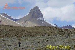 Yak Safari Pamir Shimshal Pass