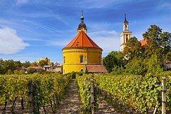 Wine Tasting in Modra from Bratislava, Slovakia