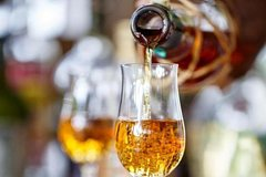 Rum tasting & masterclass