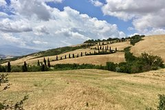 tour of the Val DOrcia from Rome