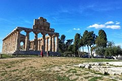 Paestum Temples and Buffalo Farm from Sorrento