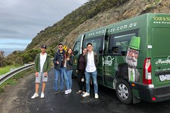 Great Ocean Road Family Day Tour- Private ( up to 9 People)