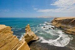 Imagen Paracas National Reserve Private Tour