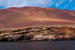 Imagen Full Day Paracas from Lima - Group tour