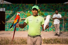 Imagen National Aviary Private Tour
