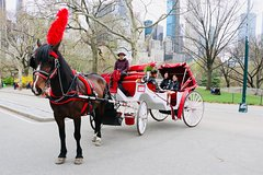 Short Central Park Evening Horse Carriage Ride