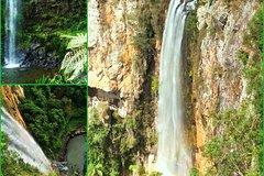 Rainforest & Waterfalls Extravaganza