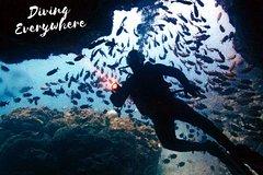 SID15 - Discover Scuba Diving Sal Island.