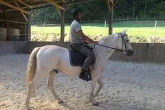 Discover the horse and the horse riding in a magnificent domain