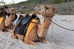 Activities,Activities,Activities,Water activities,Adventure activities,Adventure activities,Nature excursions,Nature excursions,Agadir Tour