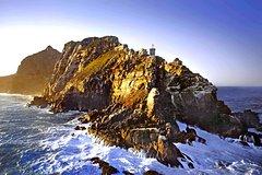 Cape Peninsula Road Tour