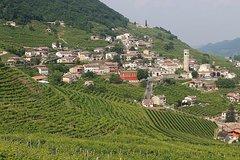 Prosecco region cellar visit, wine tasting, Palladian Villa, medieval villa