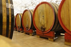 Wine tasting, Valpolicella cellar visit, Amarone and red wines region day t