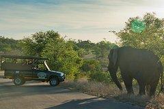5 Day Kruger Adventure