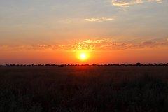 Chobe day trip adventure (Game drive and Boat cruise combined)
