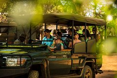 3 Days  2 Nights Western Cape Big 5 Safari and Route 62 from Cape Town