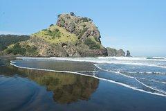 Imagen Auckland Shore Excursion: Small-Group Coast and Rainforest Tour