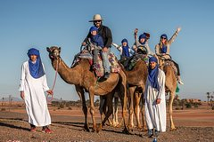Actividades,Activities,Actividades,Activities,Actividades de aventura,Adventure activities,Actividades de aventura,Adventure activities,Salidas a la naturaleza,Nature excursions,Salidas a la naturaleza,Nature excursions,Palmeral de Marrakech,Camel ride, quad, air balloon...,Paseo en camello,Excursion desierto Marrakech