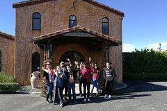 Imagen Matakana Market and Wineries Tour from Auckland City