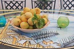 City tours,City tours,City tours,City tours,Bus tours,Bus tours,Tours with private guide,Specials,Specials,Excursion to Amalfi Coast