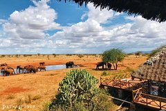 3 Day Tsavo East and Ngutuni