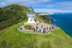 Imagen Far North New Zealand Tour including 90 Mile Beach and Cape Reinga from Paihia