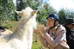 Imagen HORSEBACK RIDING MYSTIC TOUR FULL SERVICE