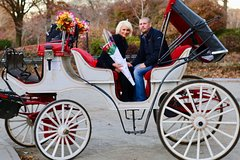 60 min surprise proposal carriage ride