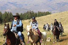 Imagen Private Half-Day Horseback Riding Tour in Cusco