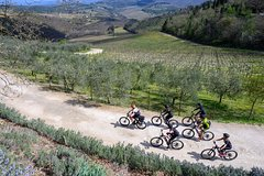 Discovering Chianti, e-bike tour - 1 day - Easy
