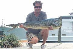 Half day Deep sea/light tackle fishing charters